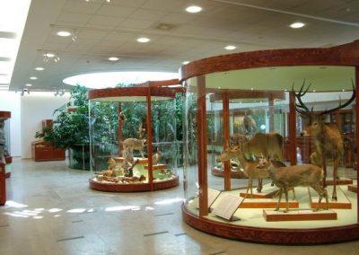 gyongyos_matra_muzeum-5-l
